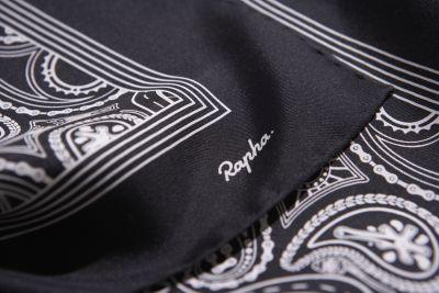 SilkScarf_LogoDetail.jpg
